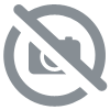 Whisky - The Arran Malt - 10 ans